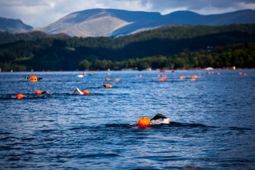 chillswim Coniston Swimmers_500x334